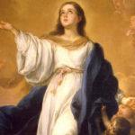 Nossa Senhora da Imaculada Conceição