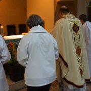 9 anos de ordenação de padre Eduardo Zanom