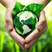 Vaticano quer abolir o plástico. O incentivo vem da Encíclica 'Laudato si'