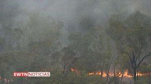 Arcebispo pede doações para vítimas de incêndios florestais na Austrália